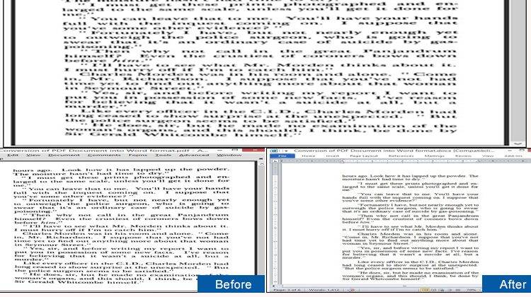 Conversion Of PDF Document Into Word Format