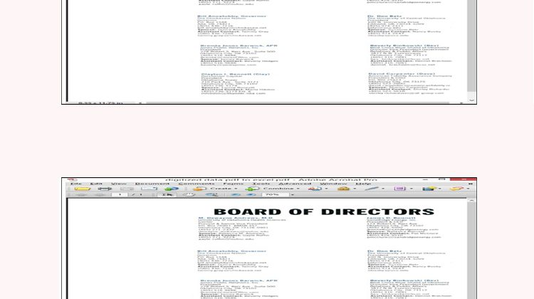 Details Of Board Members Converted Into Digitized Excel Format