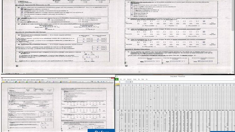 Digitization Of Survey Data Into Excel Sheet