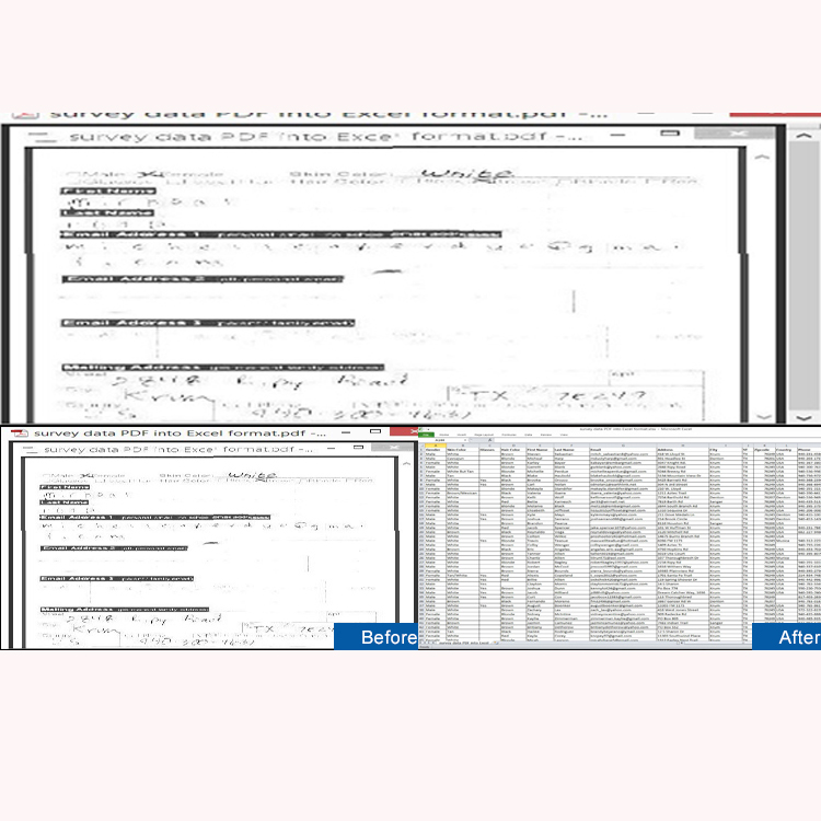 Transforming Handwritten Survey Data Of PDF Format Into Excel Format